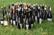 wine-bottles-1180187__180