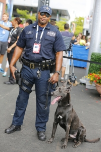 NYPD transit bureau K-9 police officer and Belgian Shepherd K-9