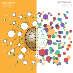 Left And Right Brain Functions Concept, Analytical Vs Creativity